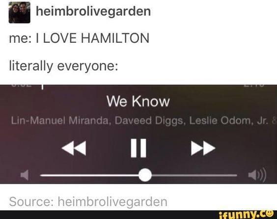 Hamilton's NYC