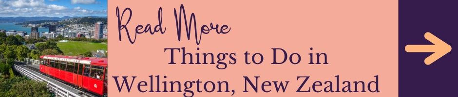 Click Here to read more about things to do in Wellington, New Zealand
