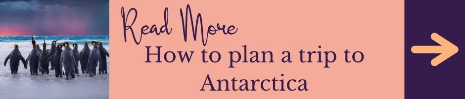 Read More: How to plan a trip to Antarctica